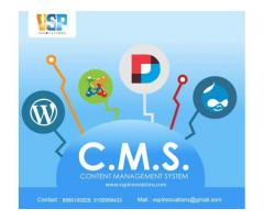 CMS Website - with free web hosting