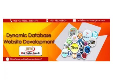 Dynamic Website Designing Company in Delhi NCR- Website Design
