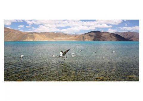 Ladakh holiday vacation tour travel packages 2020