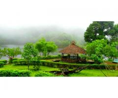 Book Holiday Packages to Munnar Now with Us