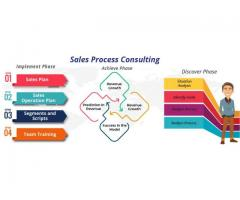 Sales Process Consulting
