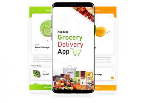 build the most perfect on-demand grocery delivery app