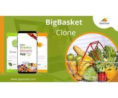 Witness substantial business growth using our BigBasket clone solutions