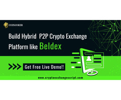 Build Hybrid P2P Crypto Exchange Platform like Beldex