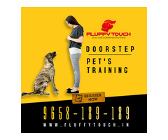 We offers Pet Grooming and Pet Training Services at Home in Delhi-NCR