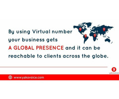 Get a virtual number and never miss a business lead