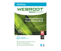 Webroot SecureAnywhere AntiVirus 1 Device, 1 Year, Global