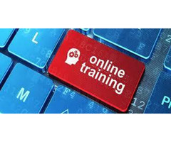PROEXCELLENCY SAP HCM ONLINE AND CLASSROOM TRAINING