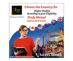 Overseas Education Consultants For Canada