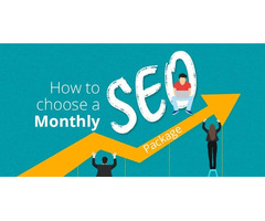 Best monthly SEO package for increase website organic traffic instantly